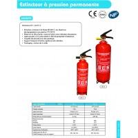 Extincteur a pression permanente